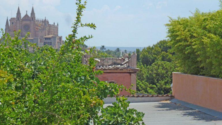 vistas desde arriba del techo